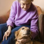 3 Reasons Most Assisted Living Communities Don't Allow Dogs (and Why You Shouldn't Sneak One In)